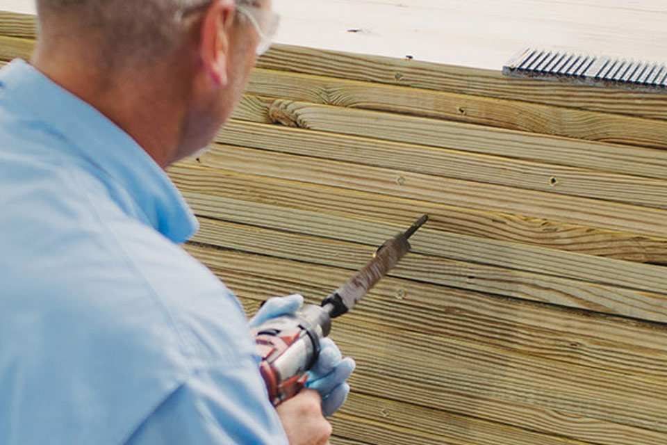 wood destroying insects inspections